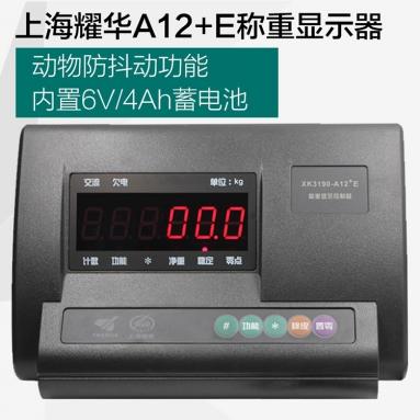 上海耀华仪表XK3190-A12+E